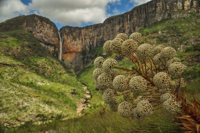Cachoeira do Tabuleiro. Foto: Guilherme Haruo
