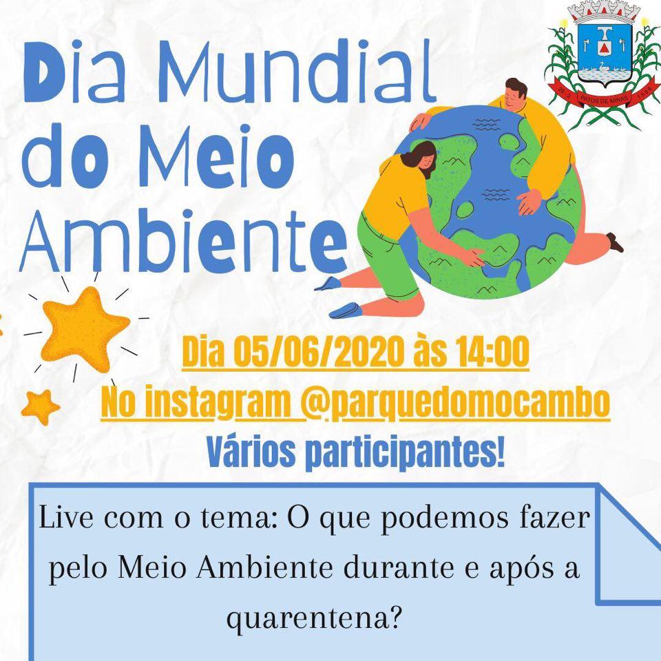 Bióloga da Conserbras participa de live em comemoração ao dia Mundial do Meio Ambiente